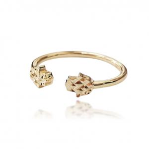 טבעת זהב - פתוח חמסות